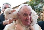 pape-agneau.jpg